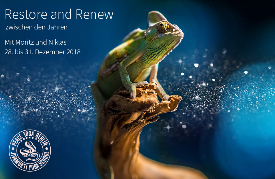 Restore and Renew Workshop Berlin