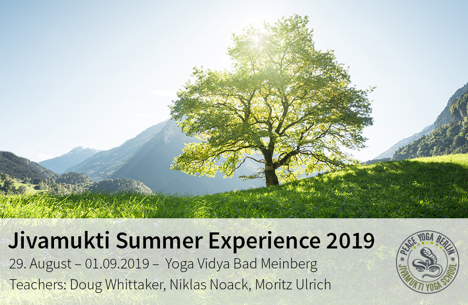 Jivamukti Summer Experience