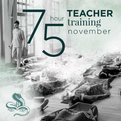 75 Stunden Jivamukti Yoga Teacher Training November 2021